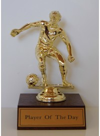Soccer - Player of the Day